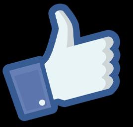Facebook like icon for Torrevieja Translators Reviews